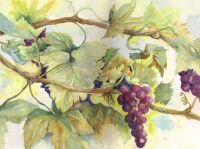 """""""Vineyard Jewels"""" by Becki Hesedahl"""