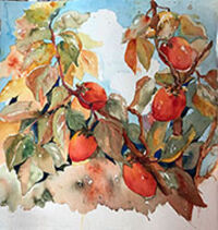 Persimmons in the Hood by Becki Hesedahl