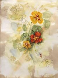 Nasturtiums by Carol Chapel