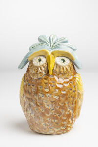 Blue Owl Bank by Michelle Mills