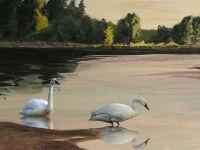 swan by Richard Bunse